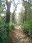 Path to Hluboka chateau